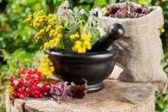 Цзу-сан-ли - точка долголетия и здоровья